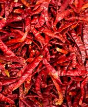 dry chilli1